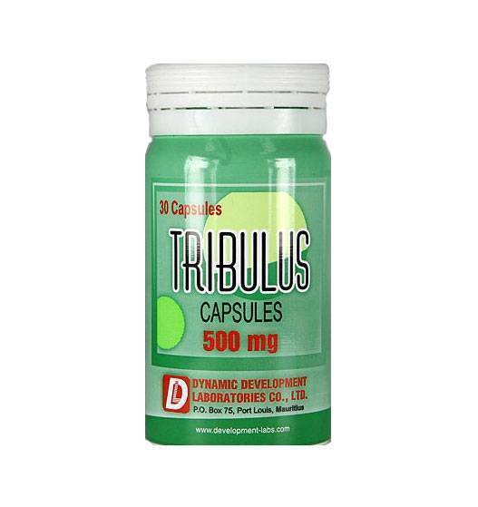 Dynamic_Development_Tribulus_500mg_30kaps-830-B.jpg